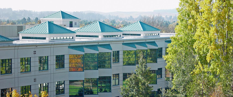 SSU Library Roofline