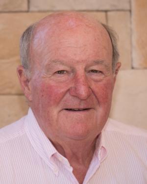 Mr. Dan Libarle